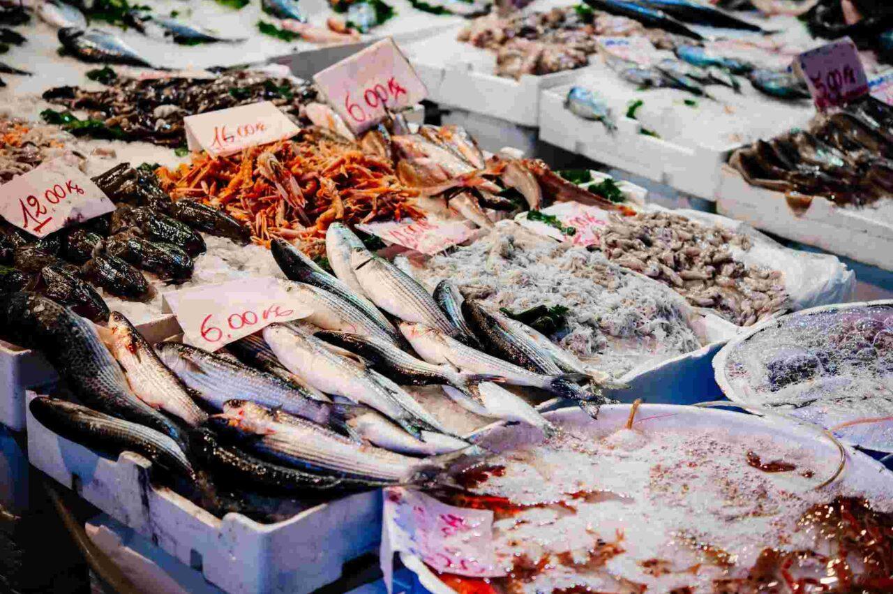 10+3 vissoorten die de basis vormen voor Italiaanse visgerechten